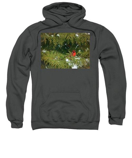 Bright Spot Sweatshirt
