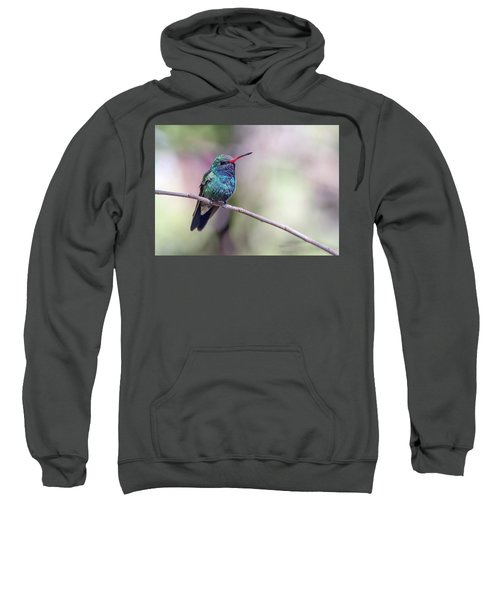 Broad-billed Hummingbird 2008-031718-1cr Sweatshirt