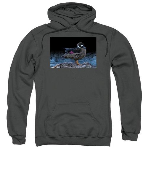 Bronze-winged Duck Sweatshirt