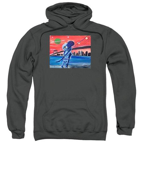 Brooklyn Play Date Sweatshirt