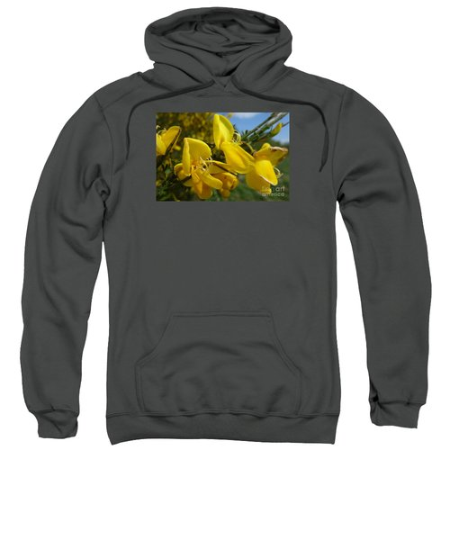 Broom In Bloom 3 Sweatshirt