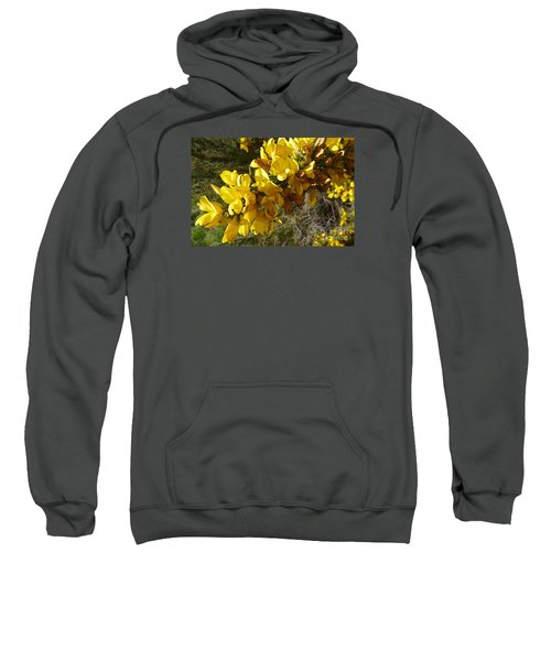Broom In Bloom Sweatshirt