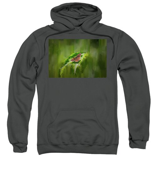 Brown Butterfly #h6 Sweatshirt