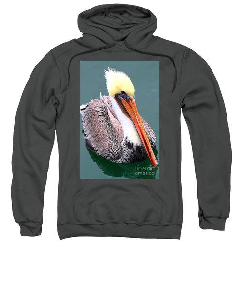 Brown Pelican . 7d8291 Sweatshirt