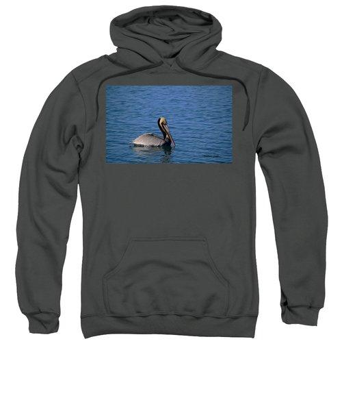 Brown Pelican Of California Sweatshirt