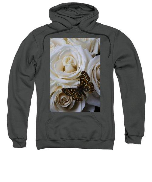 Brown Spotted Butterfly Sweatshirt