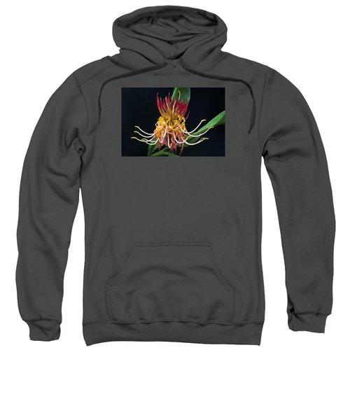Brownea Macrophylla Tropical Flower Sweatshirt