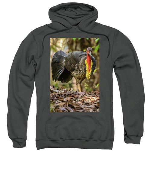 Brush Turkey Sweatshirt