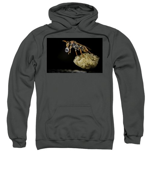 Sweatshirt featuring the photograph Bubble Blowing Wasp by Chris Cousins