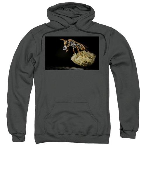 Bubble Blowing Wasp Sweatshirt