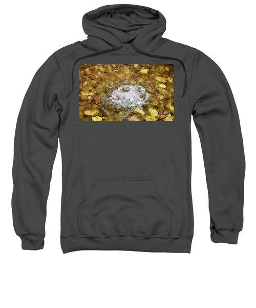 Bubbling Water In Rock Fountain Sweatshirt