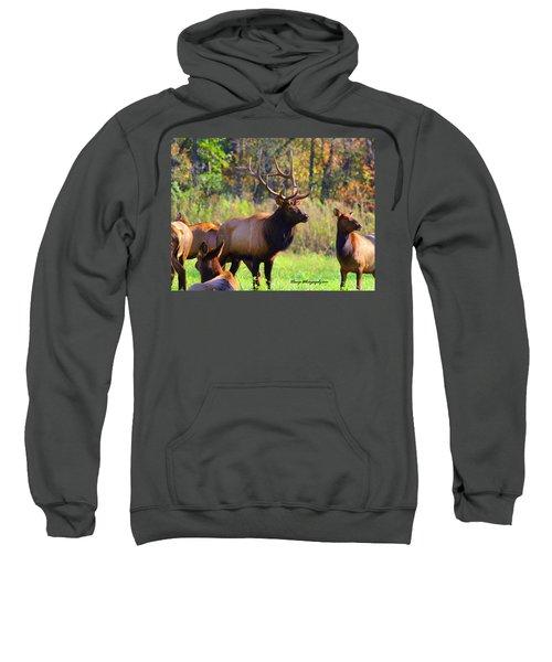 Buffalo River Elk Sweatshirt
