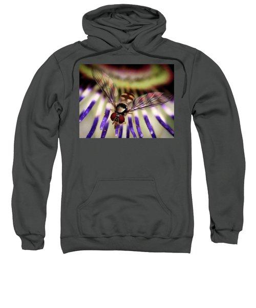 Bug Eyed Sweatshirt