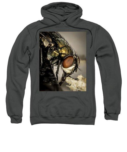 Bug On A Bug Sweatshirt
