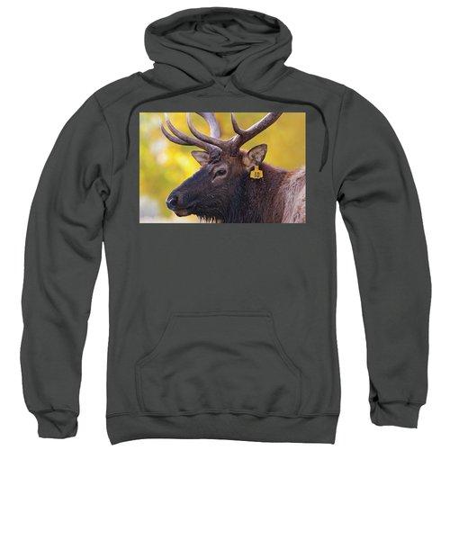 Bull Elk Number 10 Sweatshirt