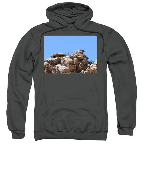 Bull From Joshua Tree Sweatshirt