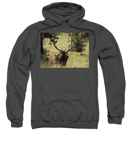 Bullelk1 Sweatshirt