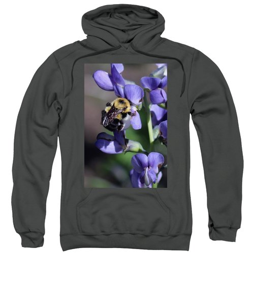 Bumble Bee, Blue Indigo Sweatshirt