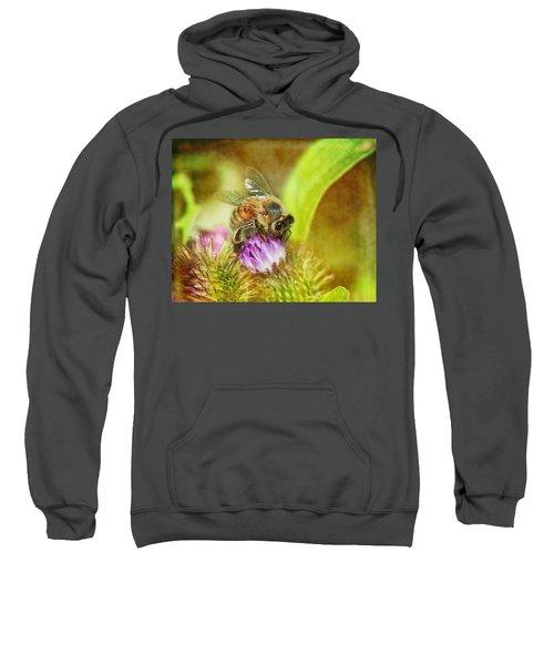 Bumbling Bee Sweatshirt