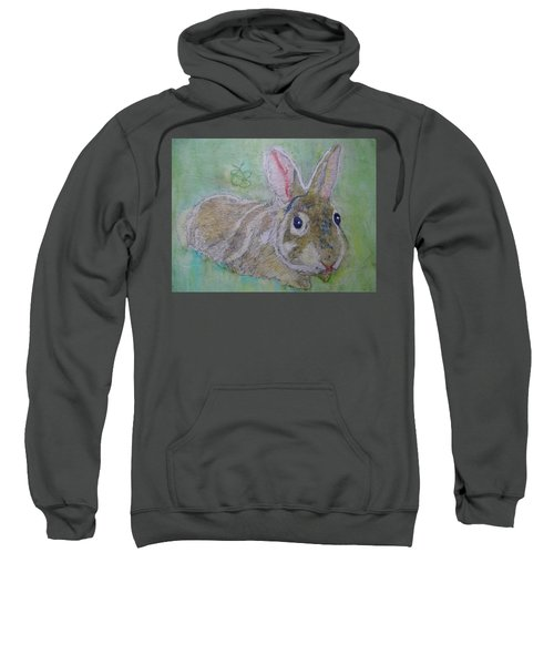 bunny named Rocket Sweatshirt
