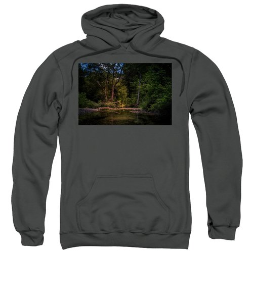 Busiek State Forest Sweatshirt