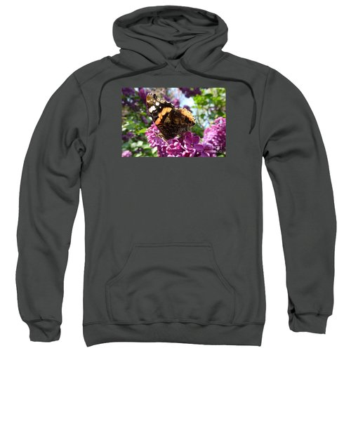 Butterfly 7 Sweatshirt