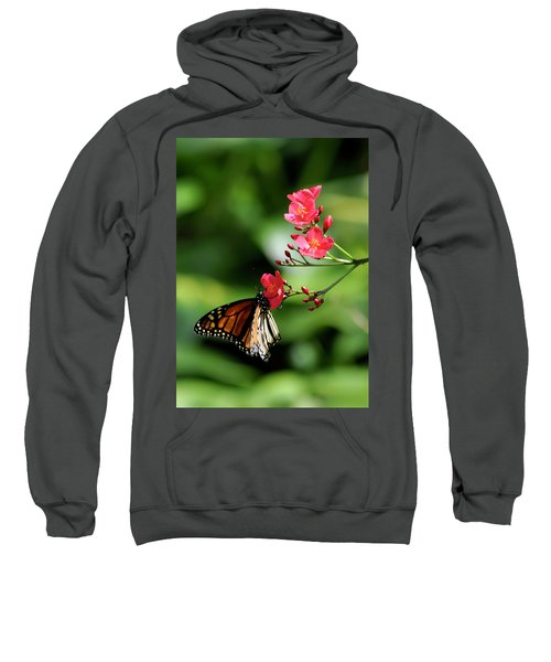 Butterfly And Blossom Sweatshirt