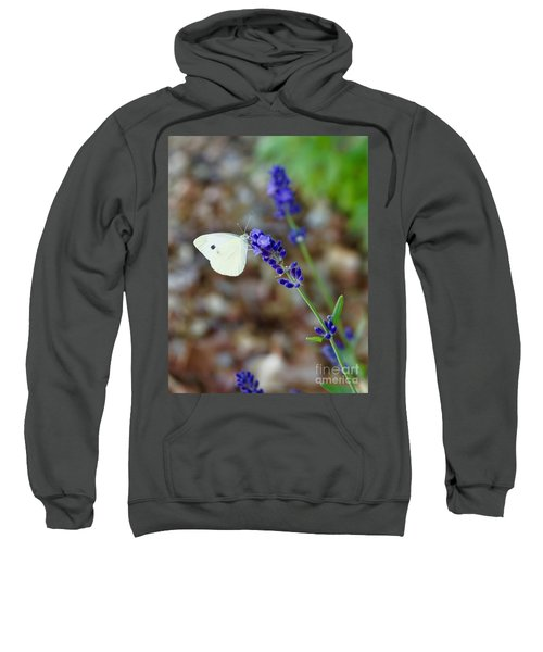 Butterfly And Lavender Sweatshirt