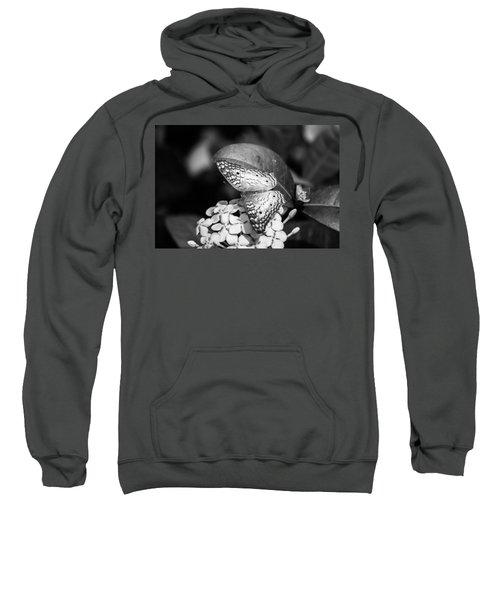 Butterfly Bw - Ins18 Sweatshirt