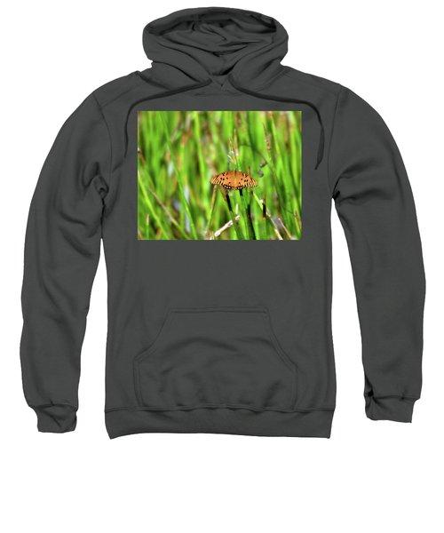 Butterfly Dream Sweatshirt