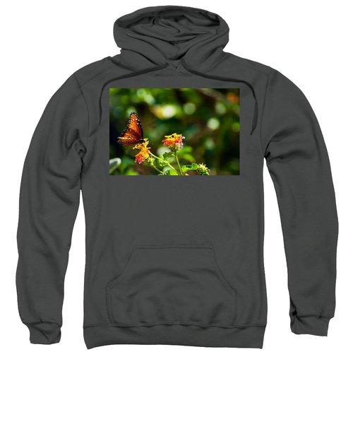 Butterfly On A Flower Sweatshirt