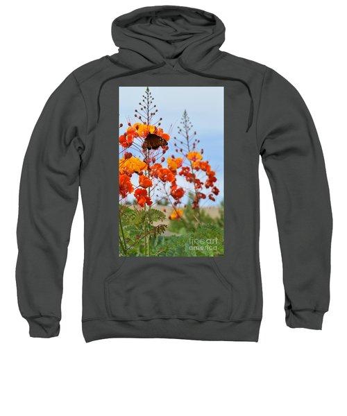 Butterfly On Bird Of Paradise Sweatshirt