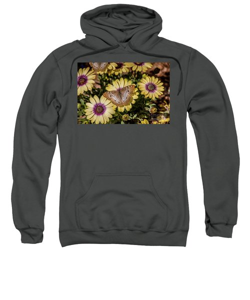 Butterfly On Blossoms Sweatshirt