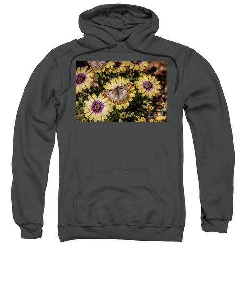 Butterfly On Blossoms Sweatshirt