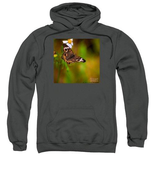 Butterfly One Sweatshirt