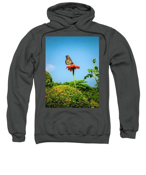 Butterfly Perch Sweatshirt