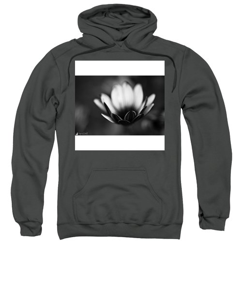 #bw #closeup #petals #someyearsago Sweatshirt by Mandy Tabatt