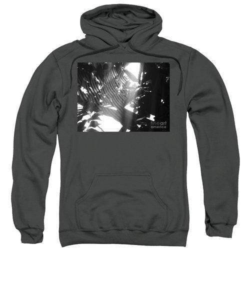Bw Radiance Sweatshirt