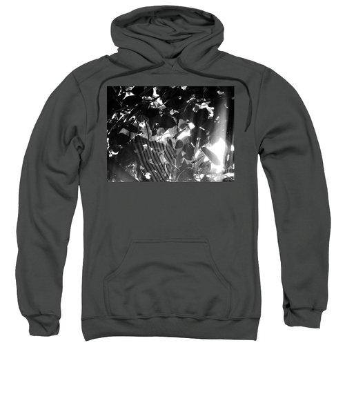 Bw Spider Phenomena Sweatshirt