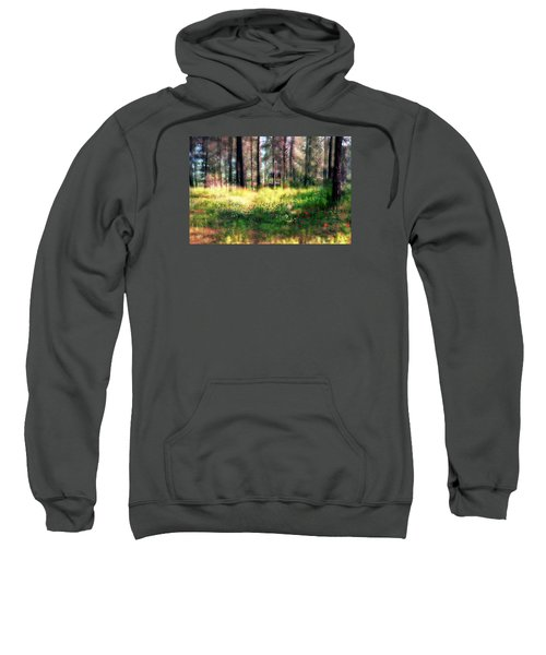 Cabin In The Woods In Menashe Forest Sweatshirt by Dubi Roman