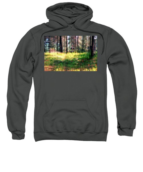 Cabin In The Woods In Menashe Forest Sweatshirt