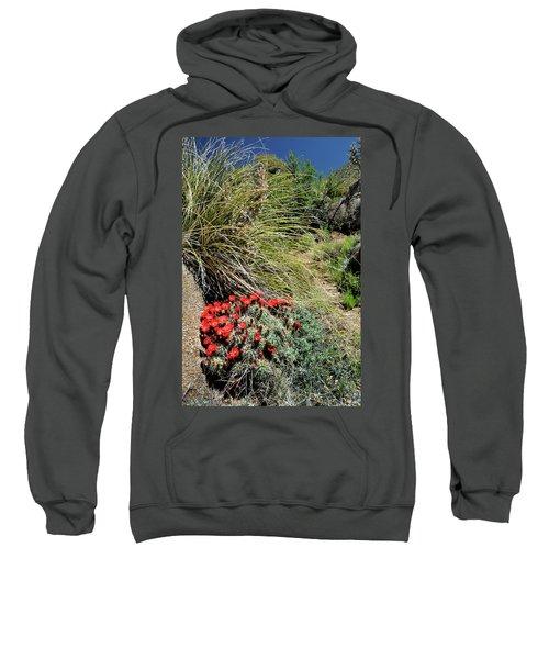 Crimson Barrel Cactus Sweatshirt
