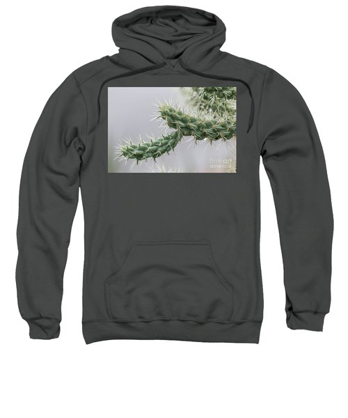 Cactus Branch With Wet White Long Needles Sweatshirt