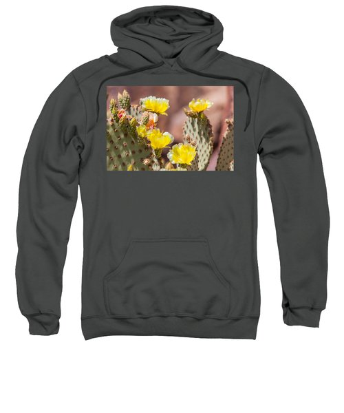 Cactus Flowers Sweatshirt