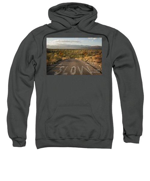 Cactus Landscape Sweatshirt