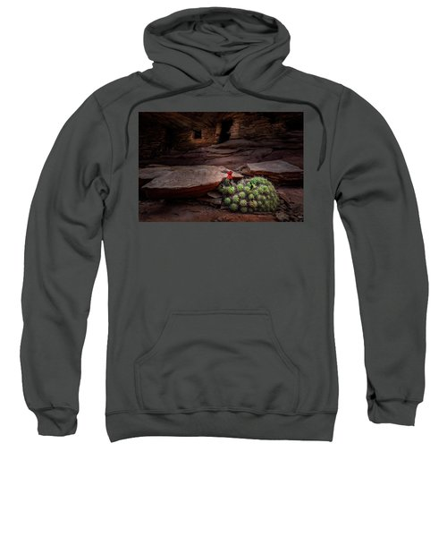 Cactus On Fire Sweatshirt
