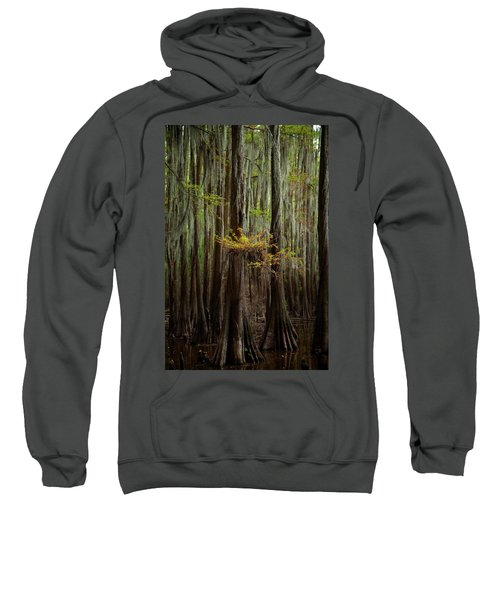 Caddo Lake #5 Sweatshirt