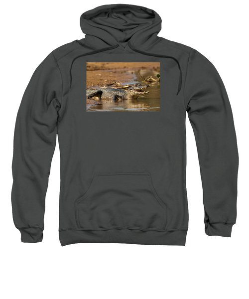 Caiman With Open Mouth Sweatshirt