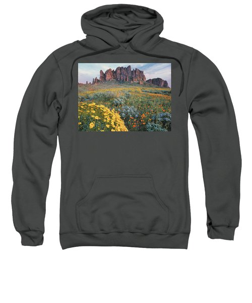 California Brittlebush Lost Dutchman Sweatshirt