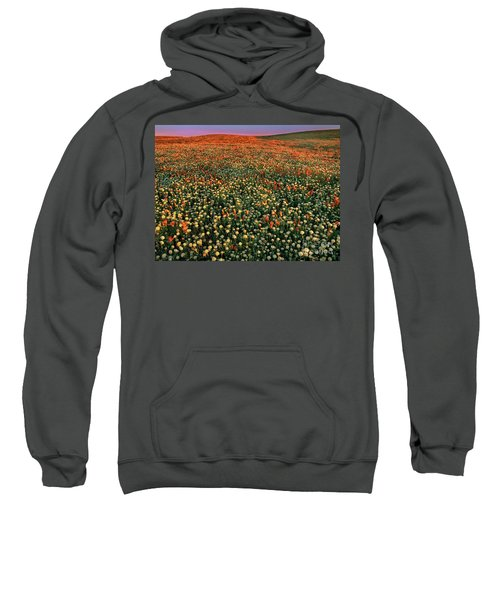 California Poppies At Dawn Lancaster California Sweatshirt